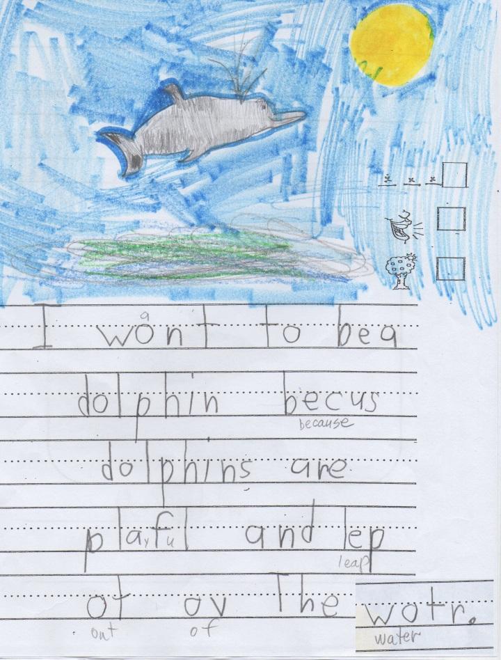 Dolphin by Mia2