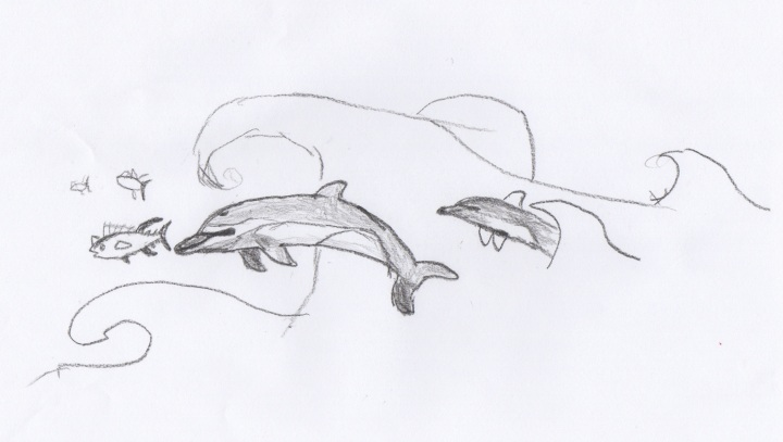 dolphins by Eben2