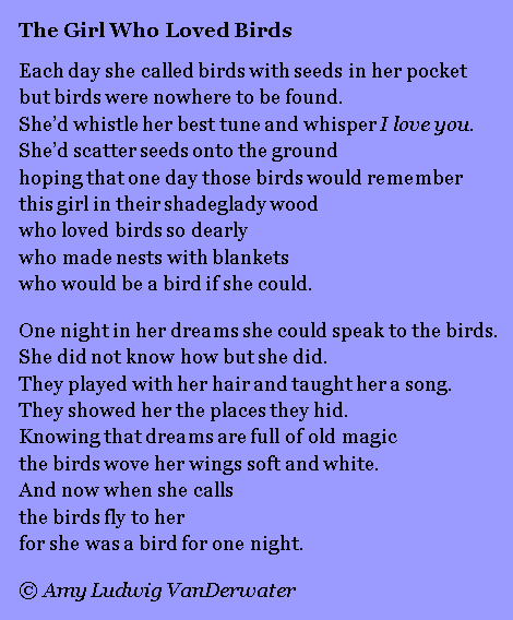 The Girl Who Loved Birds - Revised (1) copy