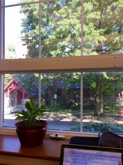 library-window